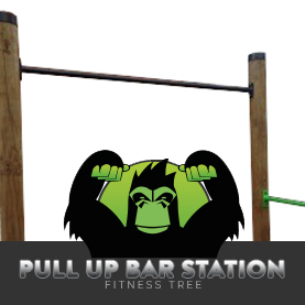FT OUTDOOR PULL UP BAR